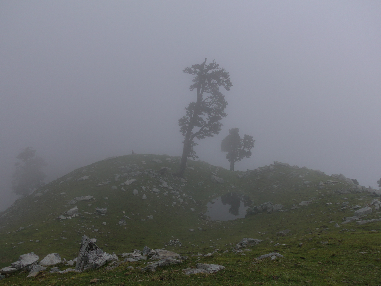 While on a hike I was suprised by rain and thick fog. Exploring the calm peaks close to McLeodGanj is something I would recommend everybody when visiting India.