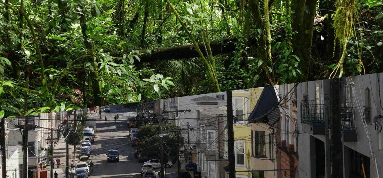 California and Costa Rica