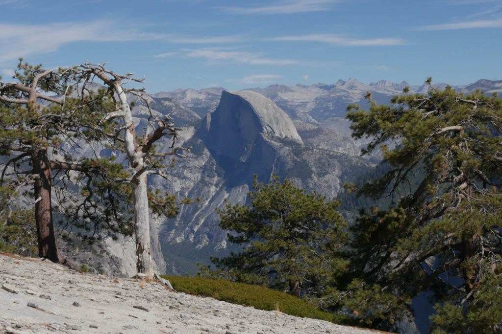 It was the second time in Yosemite and I still coudn't hike up the half dome. However, El Capitan also was beautiful.